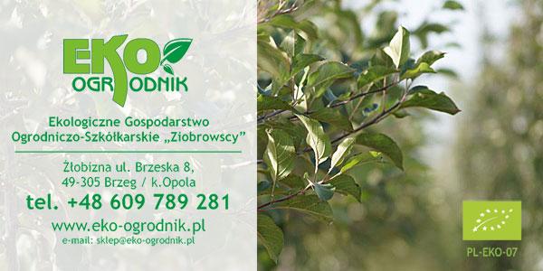 Kontakt | Szkółka Eko-Ogrodnik